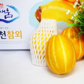 (인빌푸드)국사골 건강한 참외(중과) [5kg(15개~19개)]