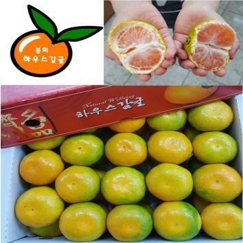 봉희 하우스감귤 [3kg(최상품,40과내외)]